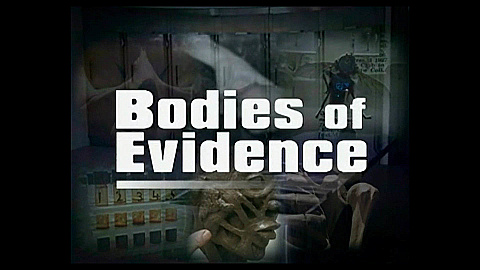 Watch Full Movie - Bodies of Evidence - The Scent of Evil - Watch Trailer