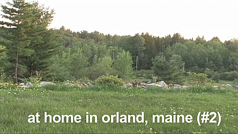 Watch Full Movie - At Home in Orland, Maine - Watch Trailer